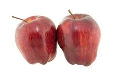 jabłko odizolowane Fotografia Royalty Free