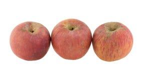 jabłko odizolowane Obrazy Royalty Free