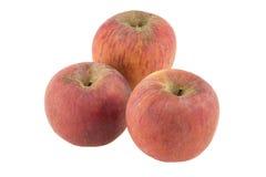 jabłko odizolowane Obraz Royalty Free