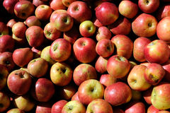 jabłko stos zdjęcia royalty free