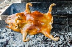 Jabalí de la carne asada Foto de archivo libre de regalías