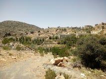 Jabal Akhdar, annons Dakhiliyah, Oman Fotografering för Bildbyråer