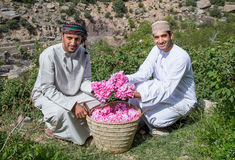 Jabal AL Akhdar nam plukkend toe Royalty-vrije Stock Afbeeldingen