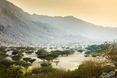 Jabal Jais berg- och ökenlandskap nära Ras al Khaimah arkivfoto