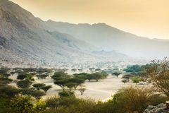 Jabal Jais mountain and desert landscape near Ras al Khaimah. UAE stock photo