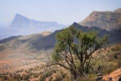 Jabal Shams la meseta Fotografía de archivo