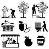 Jabłczane ikony Obraz Stock