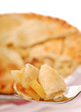 jabłczanego kulebiaka plasterek Fotografia Royalty Free