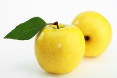 jabłczany kolor żółty Zdjęcie Royalty Free