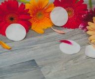 Jabones, sal de baño, esponja de la lufa lugar libre, aromatherapy, cosméticos imagenes de archivo
