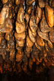 Jabugo cellar Royalty Free Stock Image