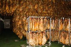 Jabugo cellar Royalty Free Stock Images
