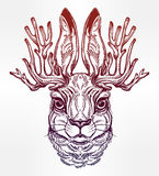 Jacalope magical creature portrait art. Royalty Free Stock Photo