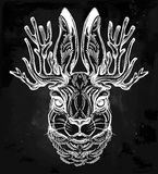 Jacalope magical creature portrait art. Royalty Free Stock Photography