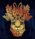 Jacalope three eyed magical creature portrait. Royalty Free Stock Images