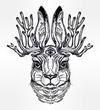 Jacalope three eyed magical creature portrait. Royalty Free Stock Photos