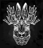 Jacalope three eyed magical creature portrait. Three eyed Jacalope magical creature portrait, horned rabbit in American folklore. For tattoo or t-shirt. Fantasy Royalty Free Stock Photos