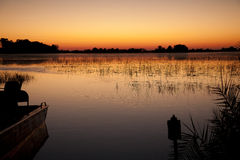 Jacana sunrise Stock Photography