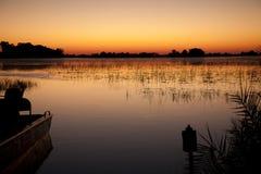 jacana wschód słońca Fotografia Stock