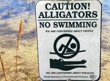 Jacarés nenhum sinal da natação Foto de Stock