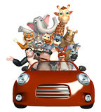 Jacaré, macacos, urso, elefante, girafa, hipopótamo, canguru, macaco, Racc Fotografia de Stock