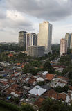 Jacarta Indonisia bogor stadszoo Royaltyfri Bild