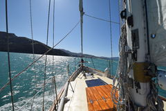 Jacht in de wateren van het zuideneiland van Nieuw Zeeland Stock Foto's