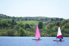 Jacht die in het kleurrijke die zeil varen van het de zomermeer in wind wordt geblazen stock fotografie