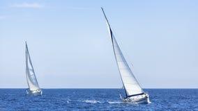 Jacht rasa w otwartym morzu żeglowanie Rzędy luksusowi jachty przy marina dokiem Podróż Obraz Royalty Free