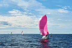 Jacht z różowym spinnaker Obrazy Royalty Free