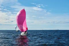 Jacht z różowym spinnaker Obrazy Stock