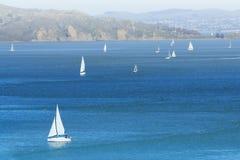 Jachten in de baai van San Francisco royalty-vrije stock foto's