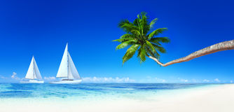 Jachten op een Tropisch Strand Stock Afbeeldingen