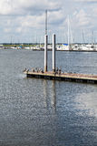 Jachthafen im Hintergrund von Pelikanen auf Pier Stockfotos