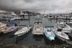 Jachthaven Cabo San Lucas Stock Foto's