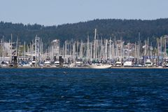 Jachthaven in de Zon stock fotografie