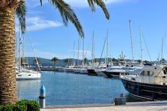 Jachthaven met jachten en palmen Stock Afbeelding