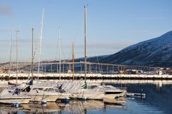 Jachthaven in Tromso in de winter Royalty-vrije Stock Foto's