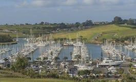 Jachthavenmening, mening van jachthaven, Auckland, Nieuw Zeeland Royalty-vrije Stock Fotografie