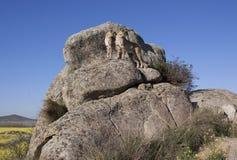 Jachtluipaarden op een grote rots Royalty-vrije Stock Fotografie