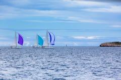 Jachtregatta bij het Adriatische Overzees in winderig weer stock afbeeldingen