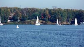 Jachtu żagla regatta rzeka zbiory wideo