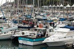 Jachty cumowali w Funchal porcie morskim, madery wyspa Fotografia Royalty Free