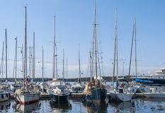Jachty i żaglówki cumowali w lagunie Rovinj, Chorwacja Żeglowanie jest jeden najwięcej ulubionych rekreacyjnych aktywność w Istri zdjęcia royalty free