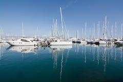 Jachty w Palmy marina Zdjęcia Stock