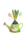 Jacinthe dans un pot avec des oeufs de pâques Photographie stock