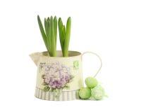Jacinthe dans un pot avec des oeufs de pâques Photographie stock libre de droits