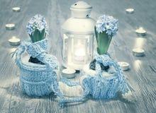 Jacinthes bleues avec des décorations de laine et bougies sur le bois Image stock