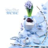 Jacinto azul com as decorações da Páscoa no elemento branco, de canto Fotos de Stock Royalty Free