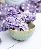 Jacinto del azul del arreglo floral de la primavera Foto de archivo